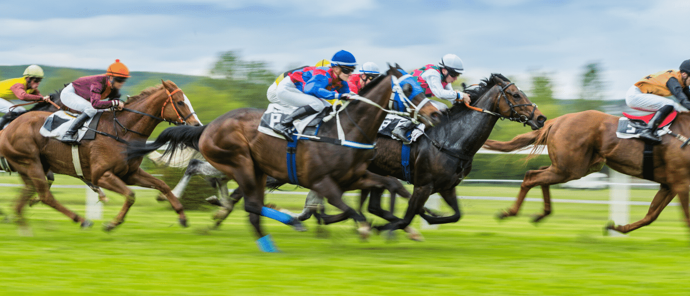 horse racing betting in the usa